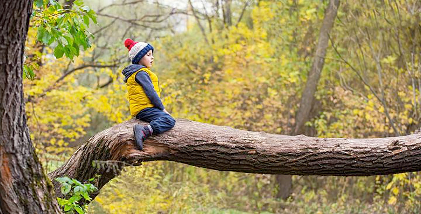 Being Surrounded By Green Space In Childhood May Improve Mental